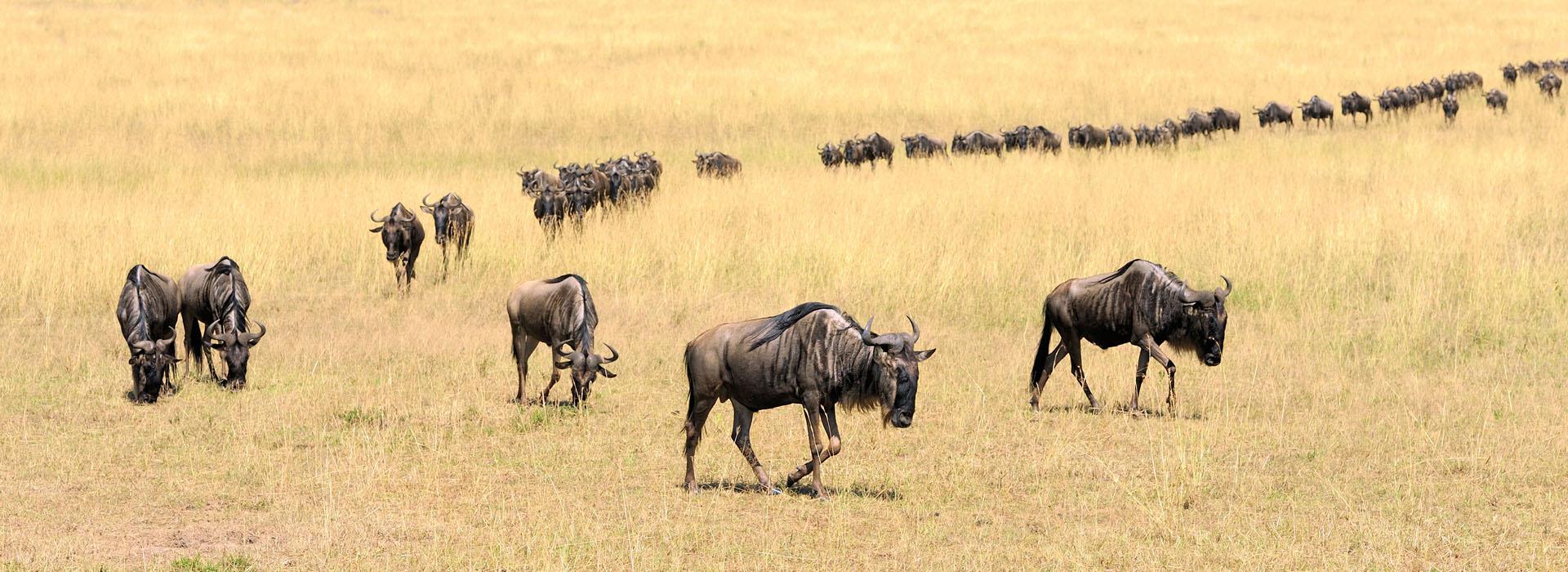 Top Destinations in Kenya - African Adventure Specialists