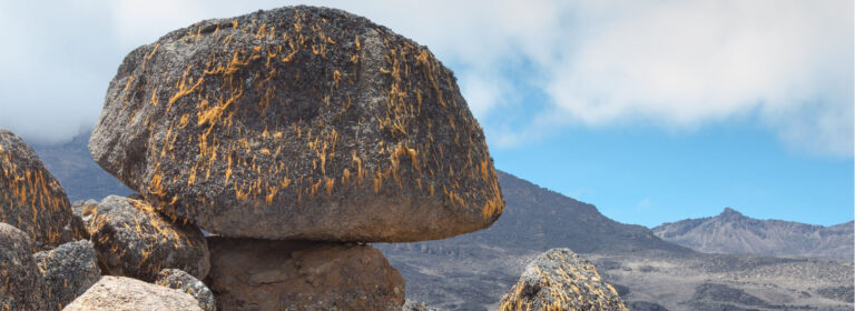 Kilimanjaro - The Roof Of Africa - African Adventure Specialists