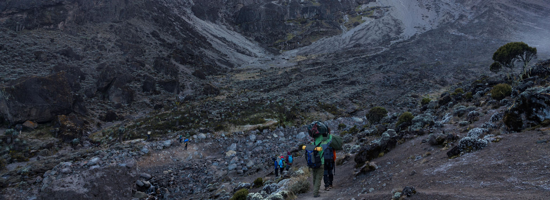 Landscape at Mt. Kilimanjaro - The Roof Of Africa - African Adventure Specialists
