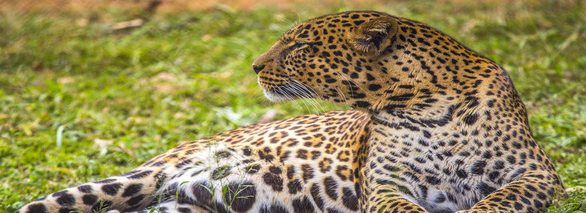 Kenya and Tanzania Tour - African adventure Specialists