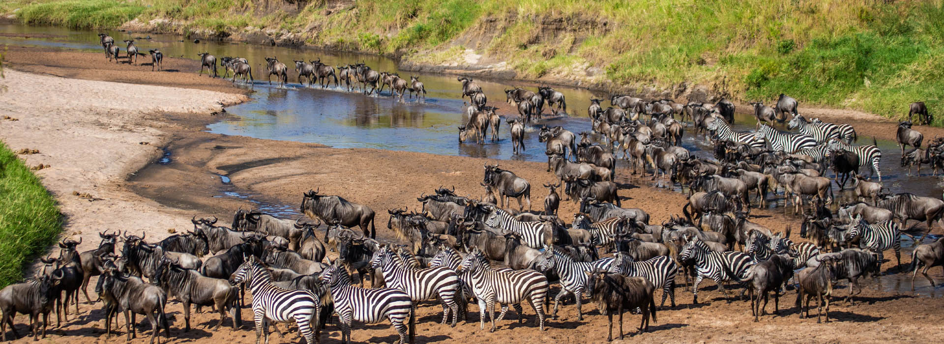 Migration Safari - African Adventure Safaris