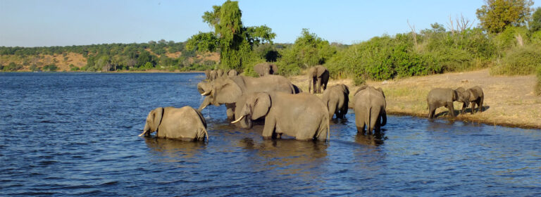Southern Circuit Tour - African adventure Specialists